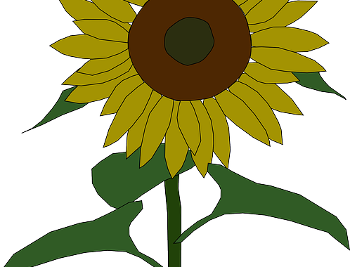 sunflower-31449_640